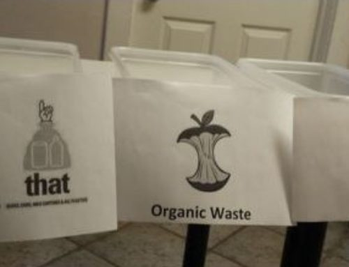 Promoting Waste Reduction on Campus