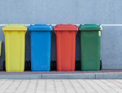 Campus Waste Audit Report Released