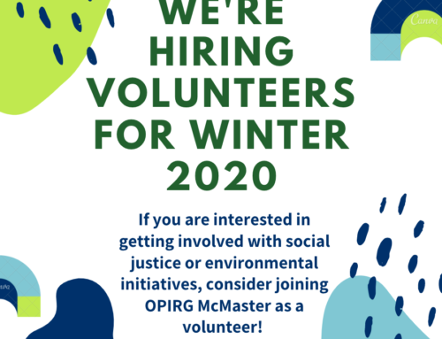 We are hiring volunteers for winter 2020!